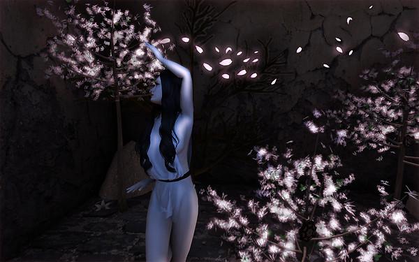...motion of light