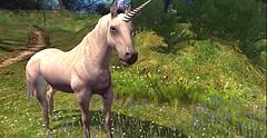 Elven Isles_unicorn