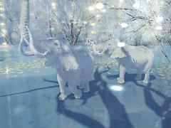 Morning Glow - Luanes Magical World_001