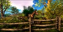 Devins Eye_Horse Day 2