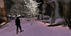 Zun Design - Winter Wonders_Ski