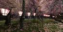 Legendary Ashemi Reprise natural - lanterns