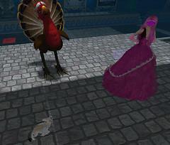 A turkey, flox and a princess Pink walk in..