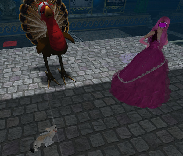 A turkey, flox and a princess Pink walk in..