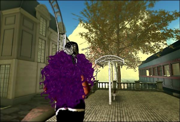 Lutz City_002