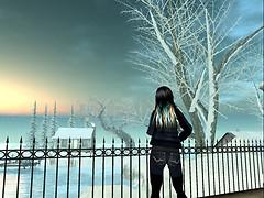 SNOW FALLS_002