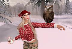 winter_funs