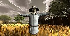 Sol Farm_Scarecrow