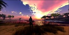 quiet beach sunset