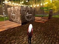 Burrow Coffee_001