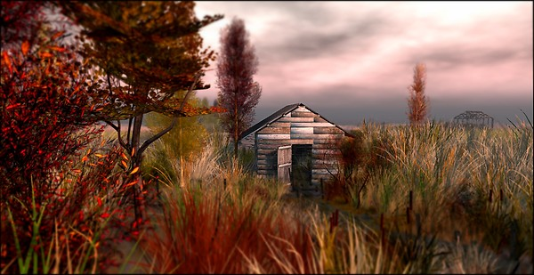 Tranquil Bay - Autumn Trace_colors