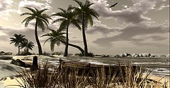 Margarita Isle - Carolina overhead