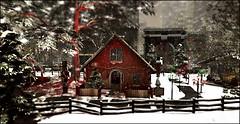 A NYC Christmas_Home