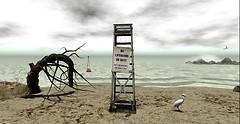 Dya's Abandoned Vacation Spot - off duty