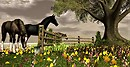 Breath of Nature_horses
