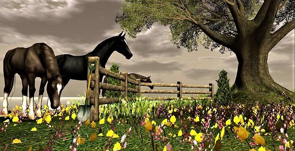 Breath of Nature_horses