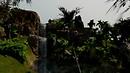 Aldora Isles Jurassic Jungle